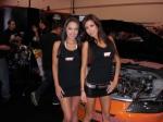 Hot Babes - SEMA 2008