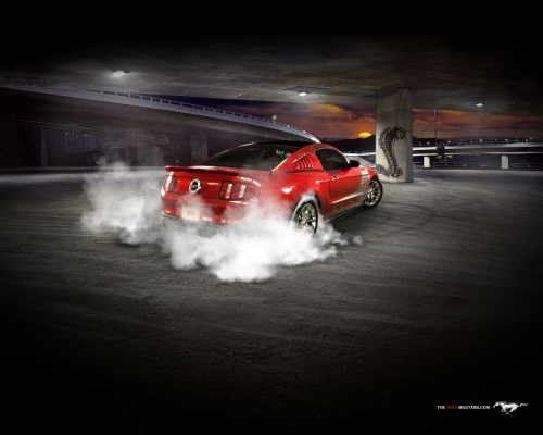 AutoAnything's 2010 Ford Mustang